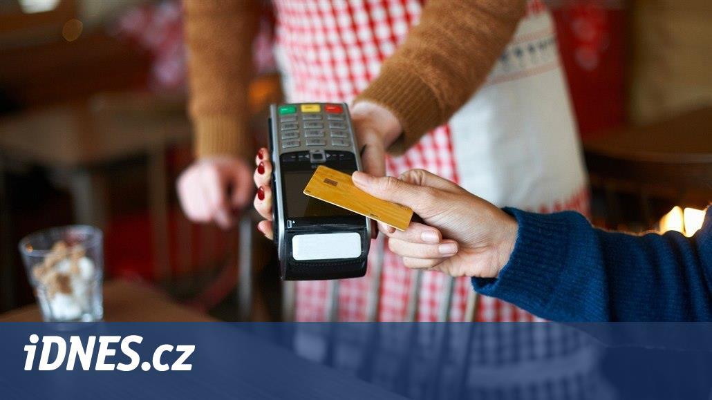 Plateb kartou v ČR prudce přibylo. Země je na špici Evropy, říká odborník