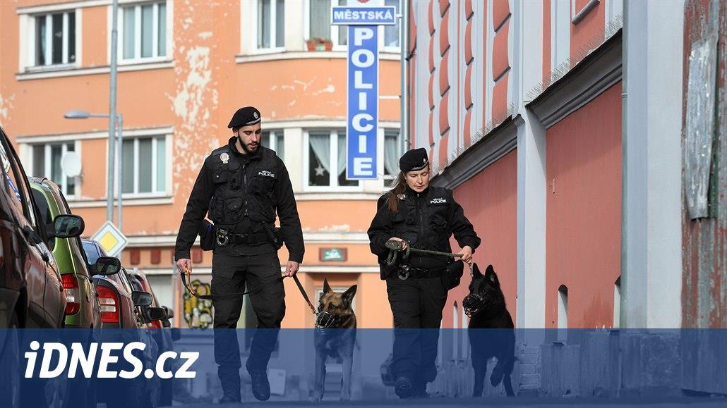 Chebští strážníci budou mít větší respekt, hlídky posílí cvičení psi