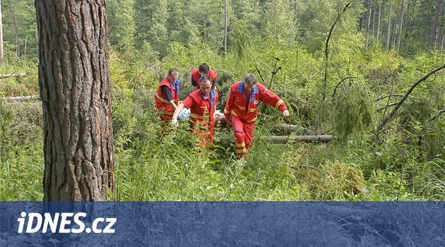 Dva muže zavalily stromy při práci v lese, pro jednoho letěl vrtulník