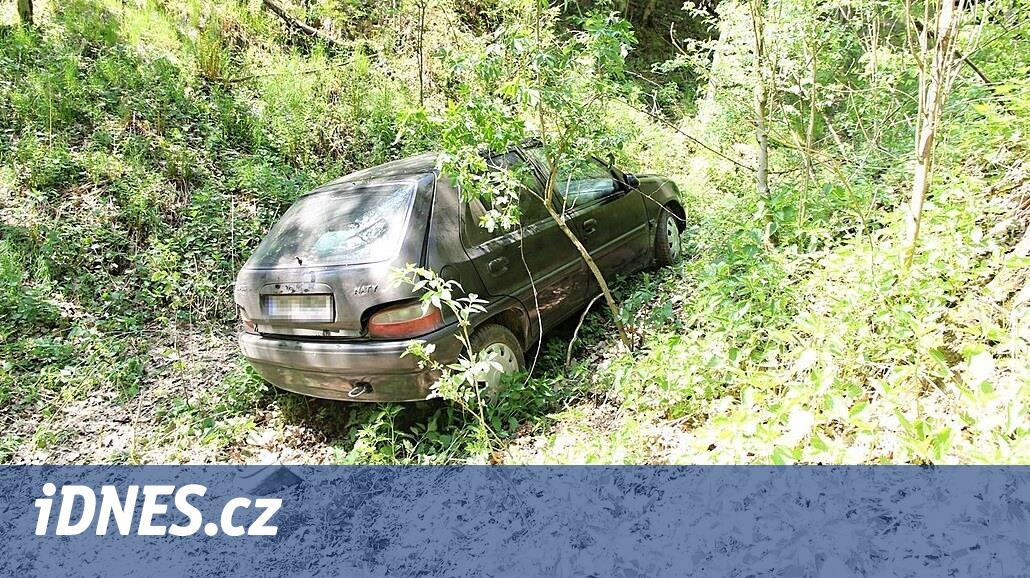 Zloděj ujížděl před policisty do polí, v autě měl lup z předchozí noci