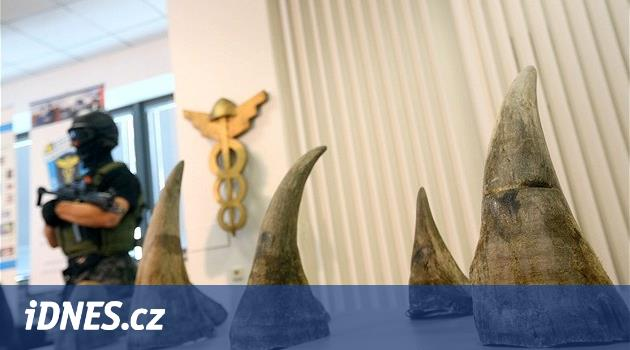 Pražský soud osvobodil většinu obžalovaných za pašování nosorožčích rohů