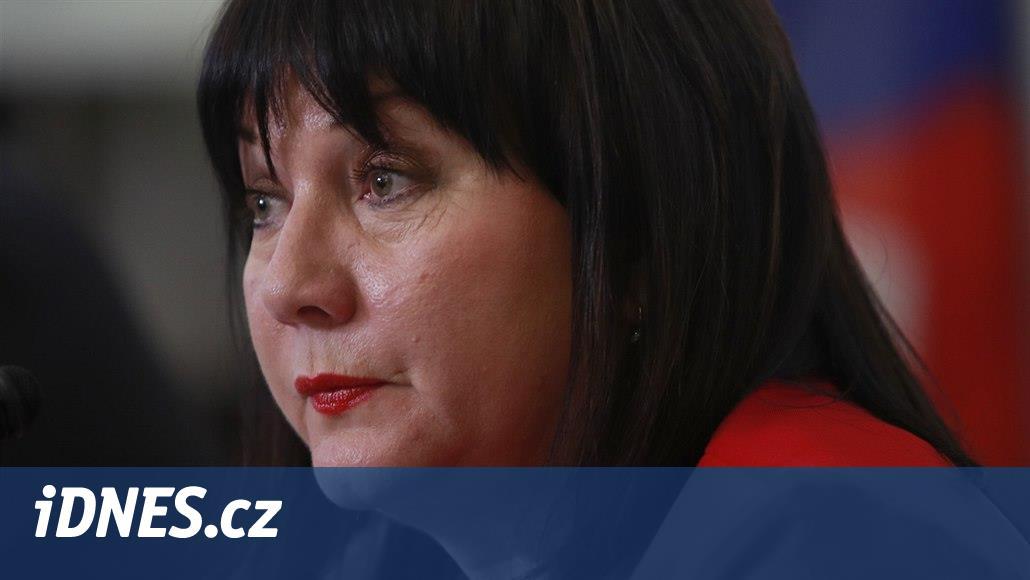 Vláda chce kvůli zrušení superhrubé mzdy víc snížit daně, řekla Schillerová
