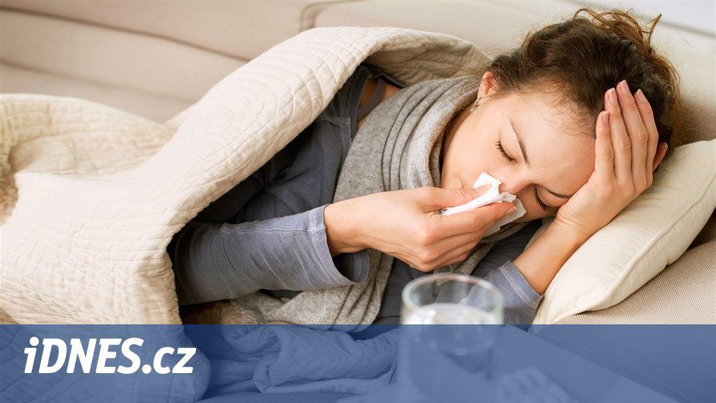 Chřipková sezona může letos nemile překvapit. Jak se na ni připravit?