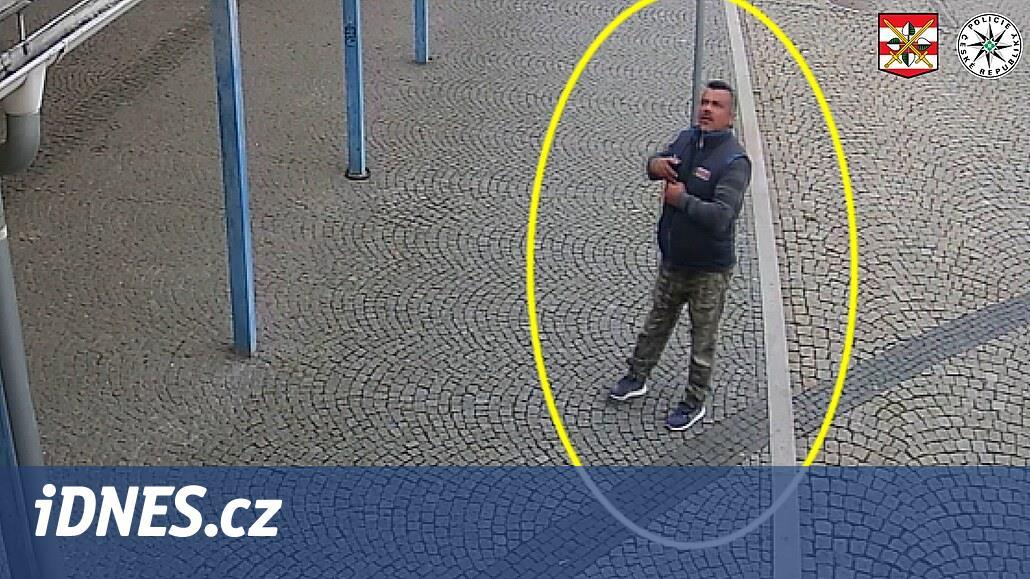 Muž ve vlaku povalil invalidu a surově jej zkopal, policie hledá svědky