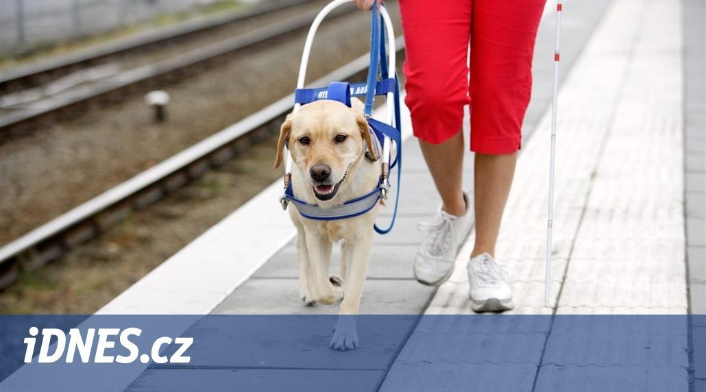 Podvod na bezbranných. Koupila vodicího psa pro nevidomé, který nevodí