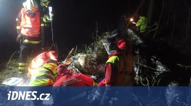 Záchranáři lesního dělníka oživovali marně, po pádu stromu zemřel