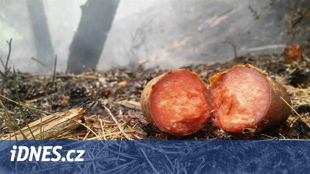 V Českém Švýcarsku hoří, správci parku našli ohniště a odhozené špekáčky