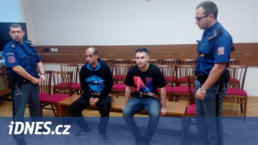 Hluchoněmý zloděj dostal za dvě přepadení 25 let vězení