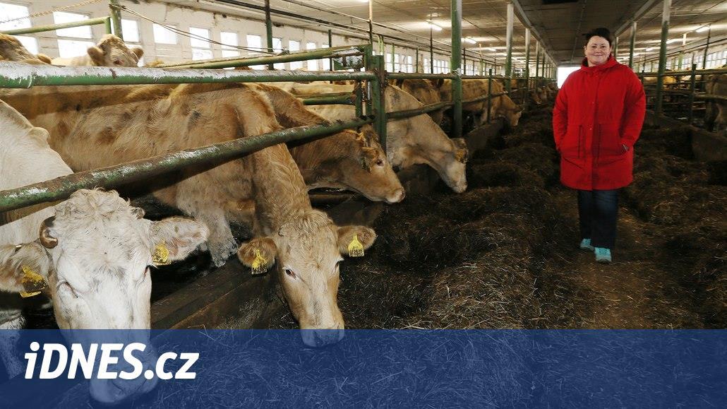 Udržet biochov je náročné. Kontroly berou ivzorky krmení, říká chovatelka