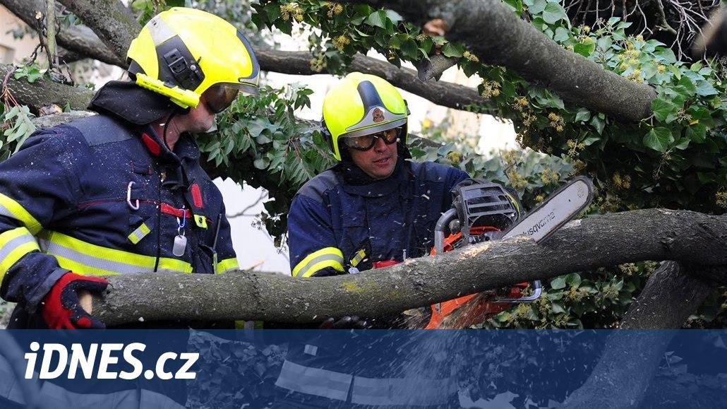 Padající strom zranil dvě děti u hřiště v pražských Klánovicích