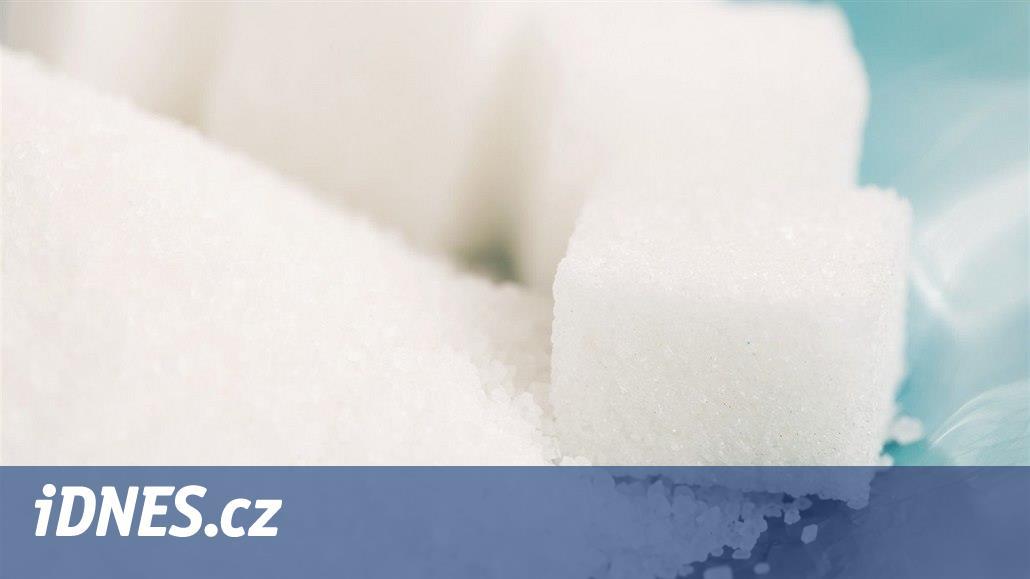 Čeká cukr osud levného mléka? Evropské cukrové kvóty skončí za pár dnů
