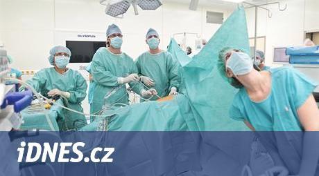 Česko je první na světě v nádorech ledvin, nejhůře je na Plzeňsku