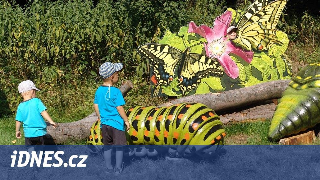 Ostravská zoo láká nové druhy hmyzu, motýlů či ptáků