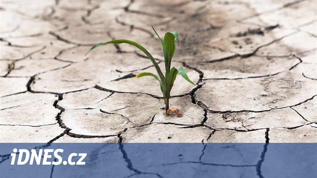 Česko stále trápí sucho, v říjnu zatím pršelo pětkrát méně něž je obvyklé