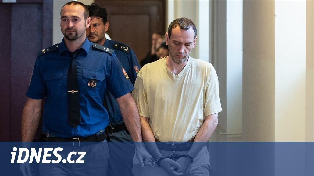 Ani včasná pomoc by ji nezachránila, řekl soudní znalec o ubodané ženě