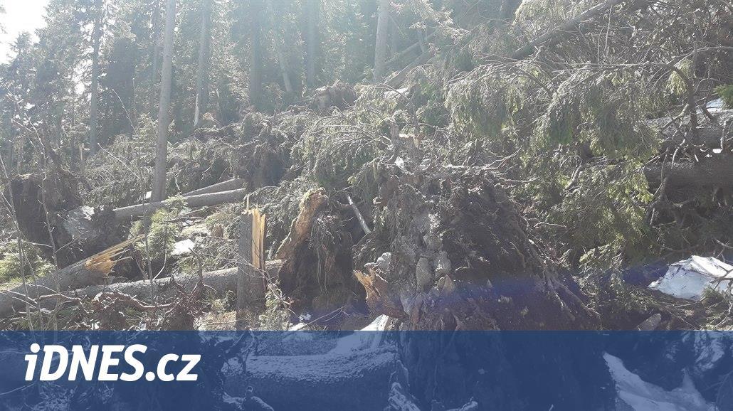 Šumavská stezka z Hamrů na Velký Ostrý je kvůli polomům uzavřena